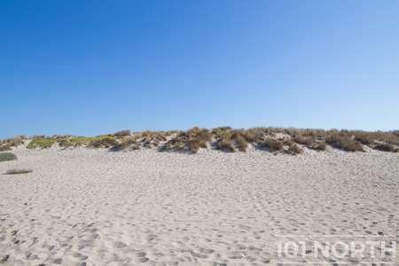 Beach 12-128.jpg