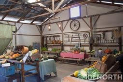 Ranch-Farm 02-15.jpg