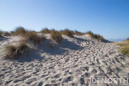 Beach 12-112.jpg