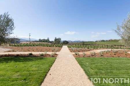 Winery 21-31.jpg