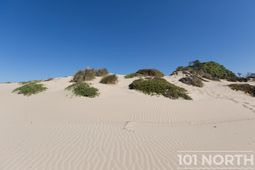 Beach 15-39.jpg