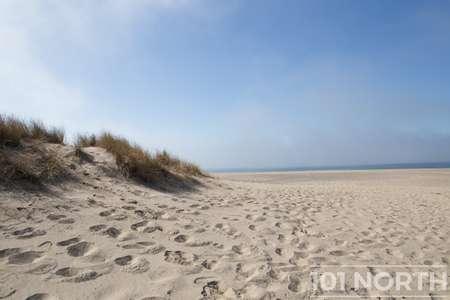 Beach 13-101.jpg