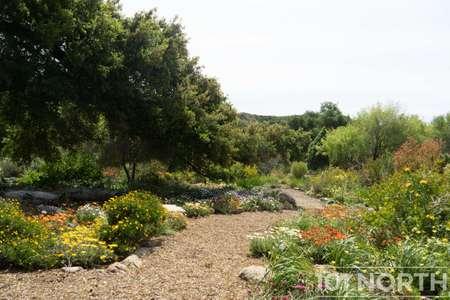 Garden 03-117.jpg