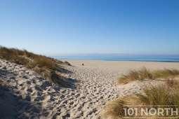 Beach 12-114.jpg