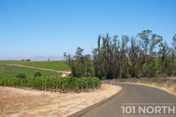 Winery 04-47.jpg