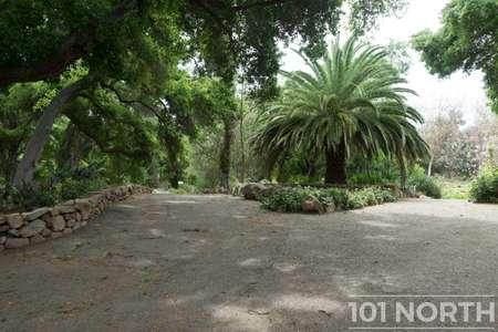 Garden 03-201.jpg
