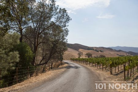 Winery 07-63.jpg
