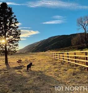 Ranch Farm 34-180.jpg