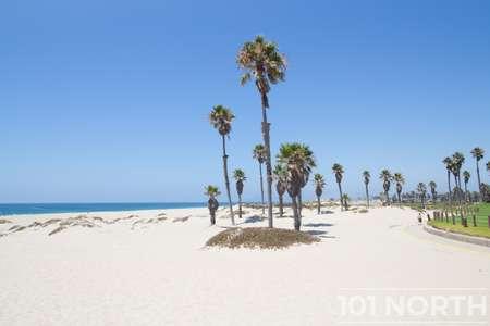 Beach 13-158.jpg