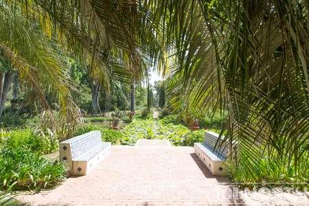 Garden 02-4.jpg