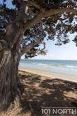 Beach 09-32.jpg