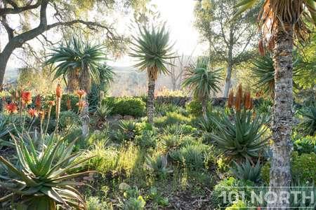 Garden 03-141.jpg