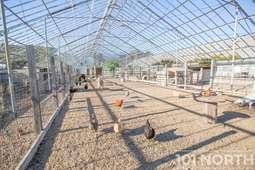 Ranch-Farm 11-50.jpg