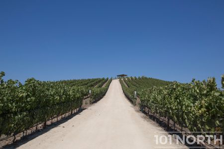 Winery 11-15.jpg