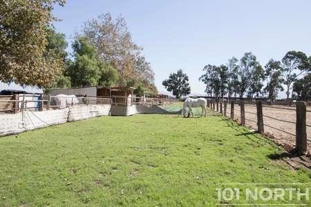 Ranch 20-01.jpg
