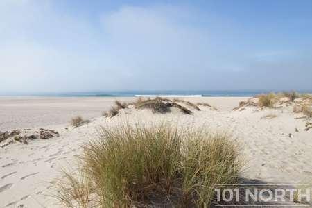 Beach 13-117.jpg