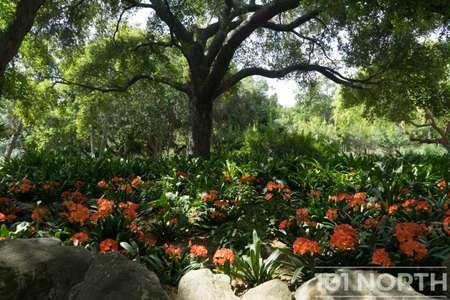Garden 03-219.jpg