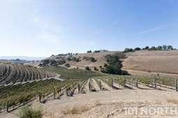 Winery 22-8.jpg