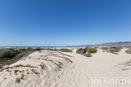 Beach 16-32.jpg