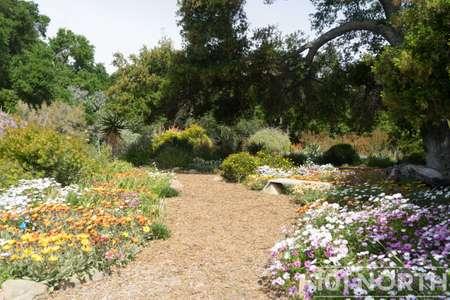 Garden 03-251.jpg