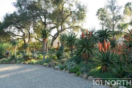 Garden 03-139.jpg