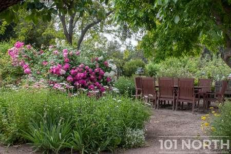 Garden 05-17.jpg