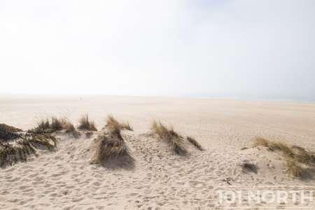Beach 13-124.jpg