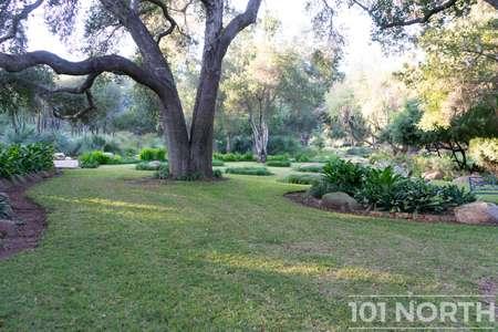 Garden 03-232.jpg