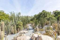 Garden 02-43.jpg