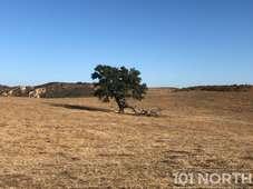 Ranch-Farm 10-181.jpg