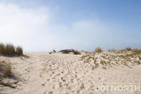 Beach 13-116.jpg