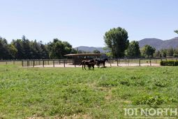 Ranch-Farm 33-37.jpg