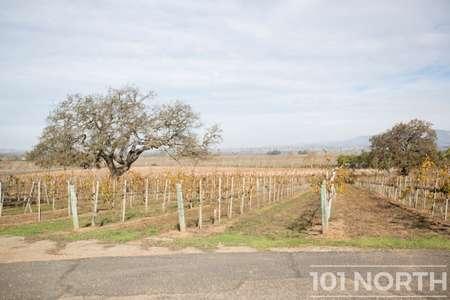 Winery 13-26.jpg
