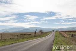 Road 03-5.jpg
