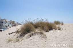 Beach 13-153.jpg