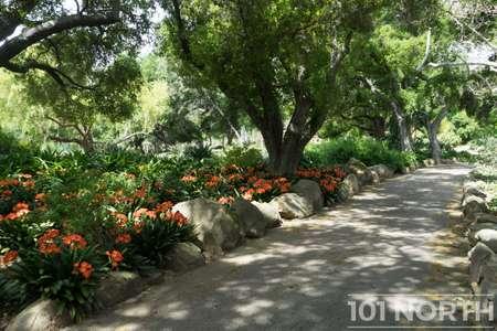Garden 03-220.jpg