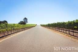 Winery 04-1.jpg