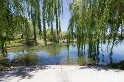 Pond 02-37.jpg