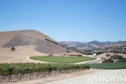 Winery 05-35.jpg