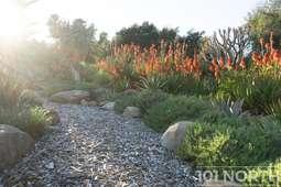 Garden 03-138.jpg