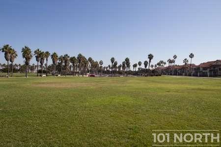 Beach 12-151.jpg