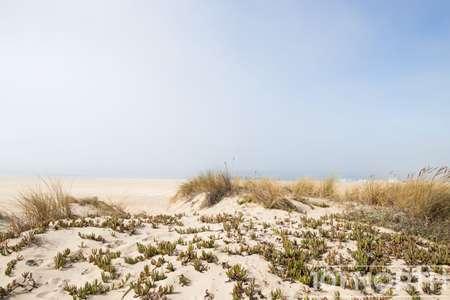 Beach 13-126.jpg