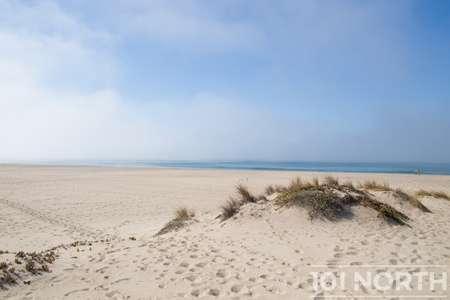 Beach 13-109.jpg