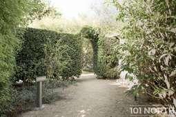 Garden 01_15.jpg