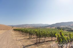 Winery 19-22.jpg
