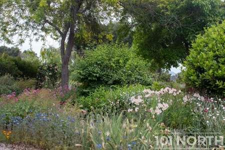 Garden 05-15.jpg