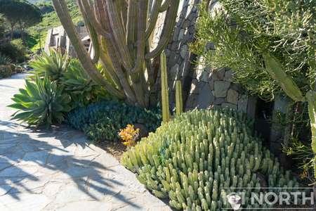 Garden 03-338.jpg