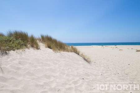 Beach 13-149.jpg