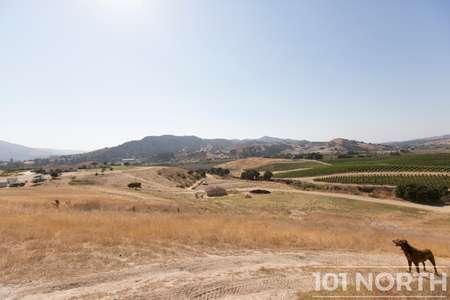 Winery 19-13.jpg