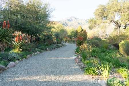 Garden 03-142.jpg